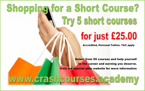 try 5 short courses for £25.00 at www.crashcourses.academy 1