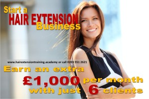 1 start a hair extension business earn 1000 with 6 clients by diane shawe