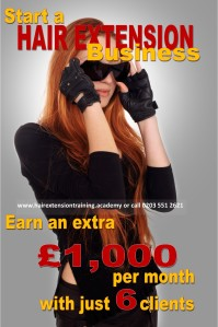 6 start a hair extension business earn 1000 with 6 clients by diane shawe