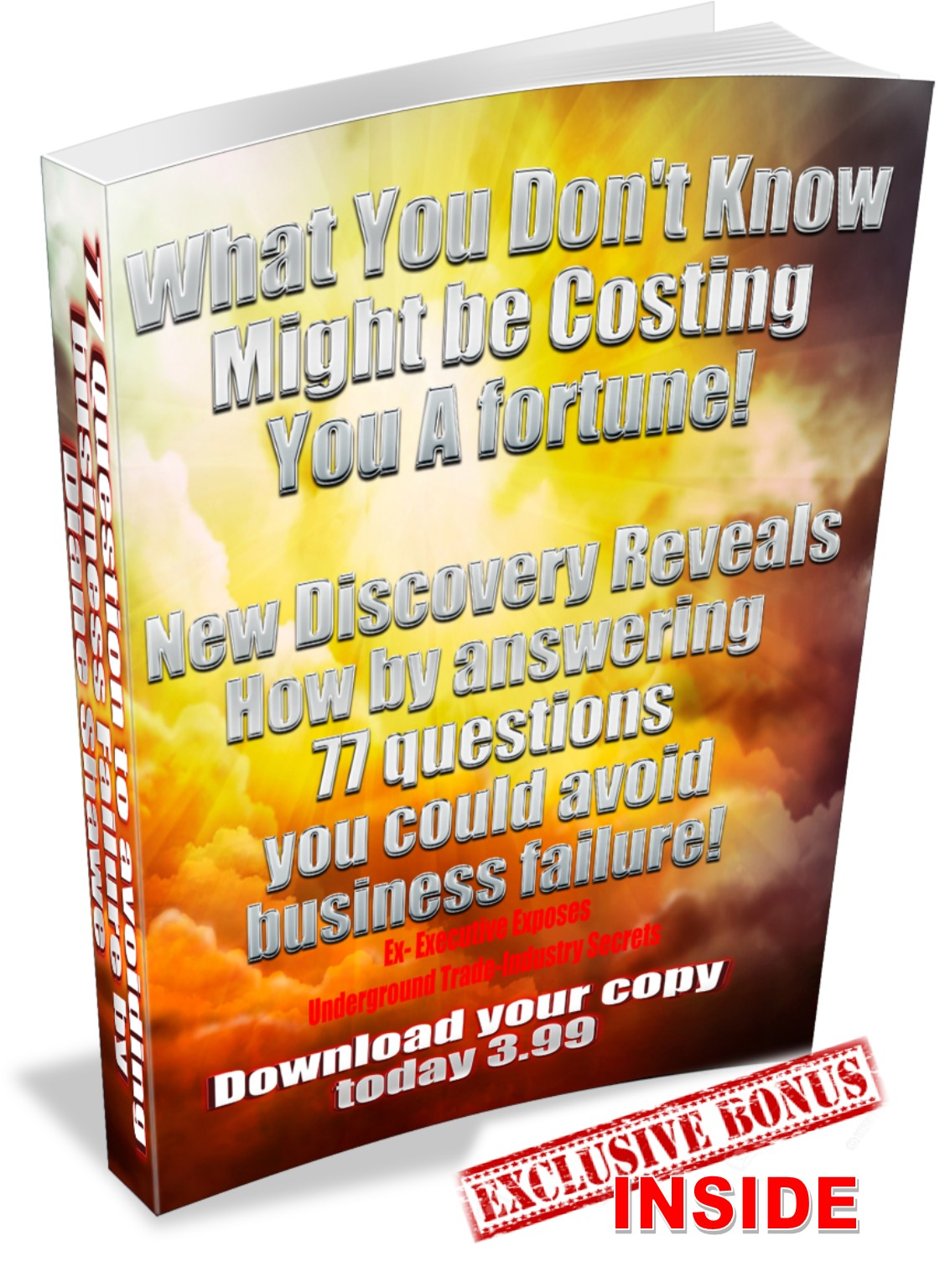 77 Questions to avoid business failure by Diane Shawe with Exclusive Bonus