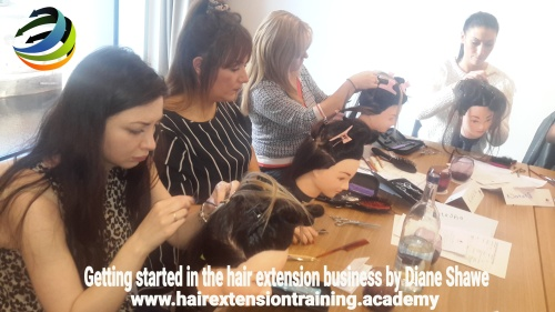 Starting up a hair extension business Diane Shawe